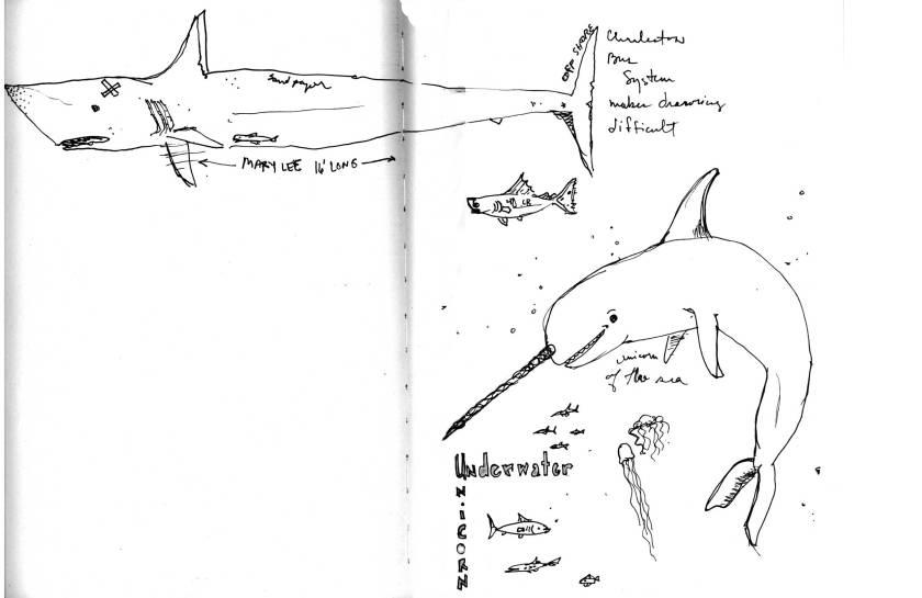 underwaterWP
