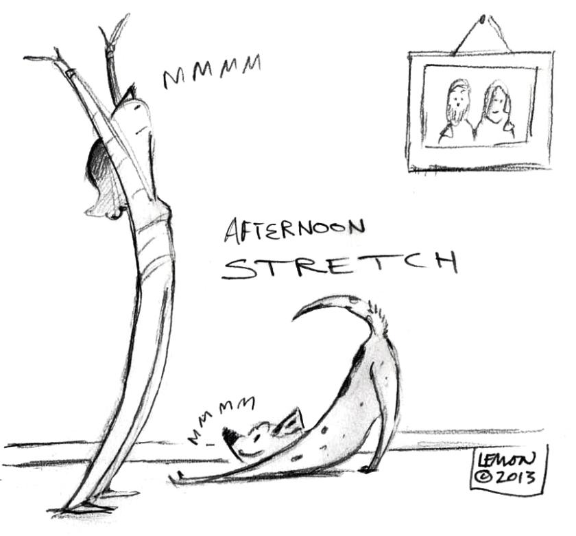 stretchWP