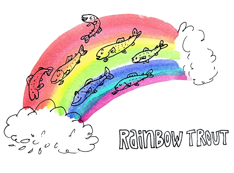 rainbowtrout