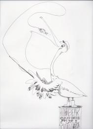 PelicanDrawing