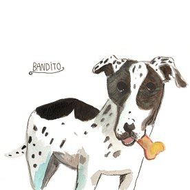 Bandito's bone, dog portrait by Nancy Lemon