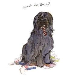 Bobby Dog painted pet portrait by Nancy Lemon