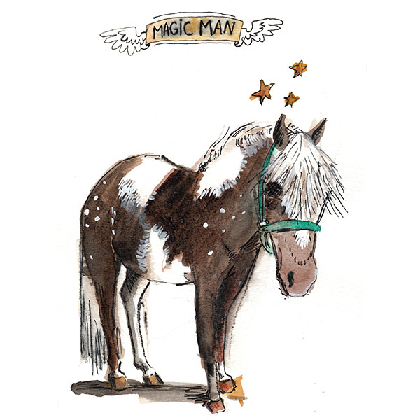 Magic Man the pony painted by Nancy Lemon